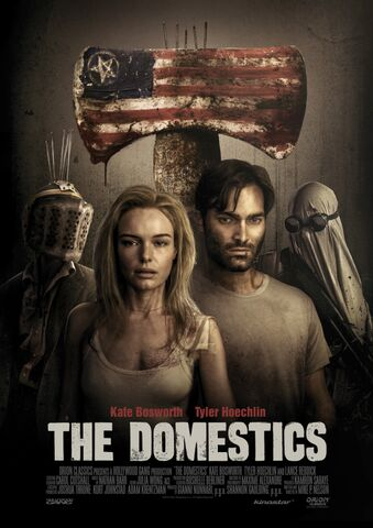 Poster The Domestics